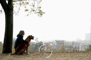 fotos-mascota-barcelona