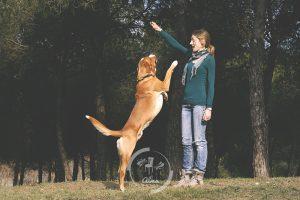 fotos-mascota-barcelona-almafotos-5